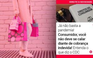Ja Nao Basta A Pandemia Consumidor Voce Nao Deve Se Calar Diante De Cobranca Indevida - Escritório de Advocacia em Várzea Paulista - SP | Dra Elaine Fernandes