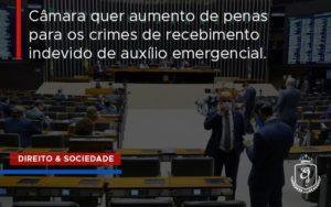 Câmara Quer Aumento De Penas Para Os Crimes De Recebimento Indevido De Auxílio Emergencial. Dra. Elaine Fernandes Blog - Escritório de Advocacia em Várzea Paulista - SP | Dra Elaine Fernandes