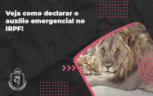 Veja Como Declarar O Auxílio Emergencial No Irpf Elaine - Escritório de Advocacia em Várzea Paulista - SP | Dra Elaine Fernandes